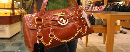 Another purse carry tragedy that didn't need to happen. Can we prevent the next one?